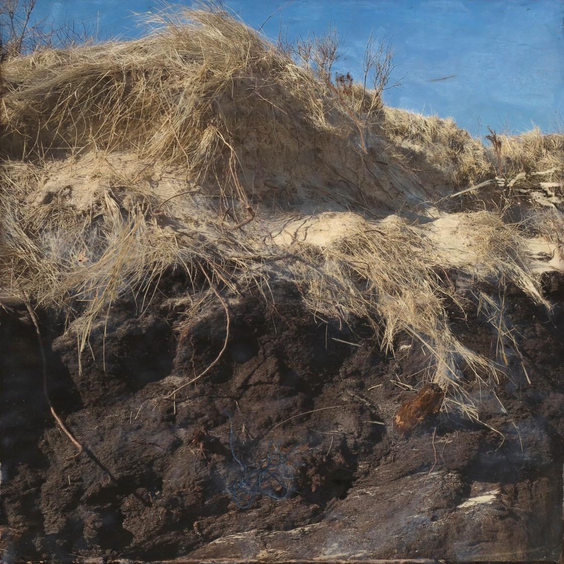 Ancient Cedar Bog encausrtic 24x24 copy