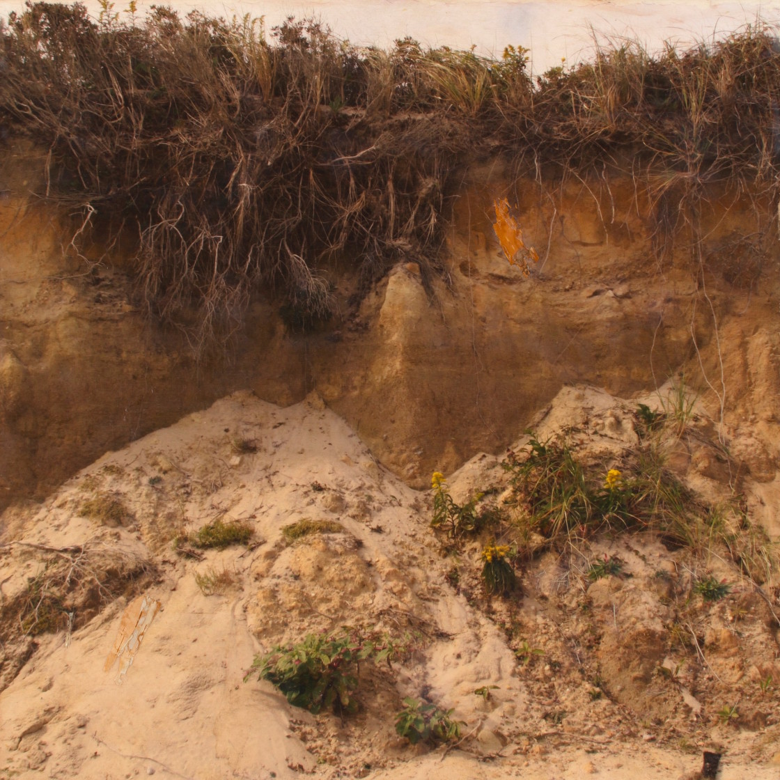 Erosion and Accretion 2015 encaustic 24x24 copy
